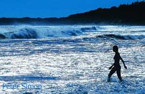 Marthas vineyard nude beach pics The Best Nude Bathing And Fishing Beaches Are On Martha S Vineyard Island
