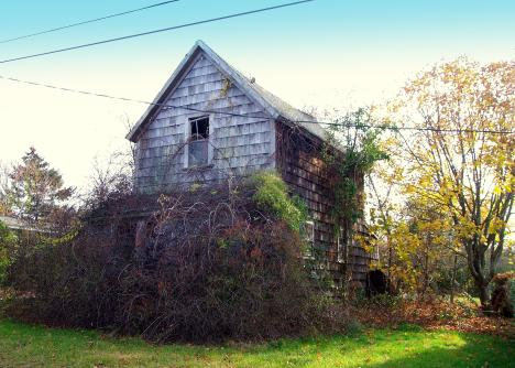 Martha's Vineyard Real Estate Insights: Tear It Down or